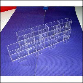 Аквариум - выноска для петушков (Betta) размерами 800х100х150